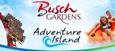 buschandadventure