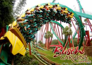 Ride a Roller-coaster